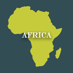 Discover African Cuisine