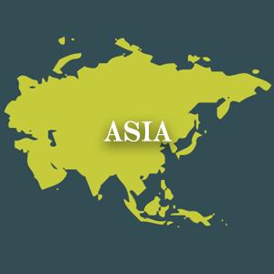 Discover Asian Cuisine