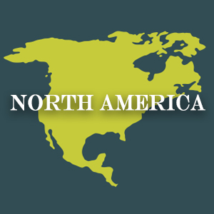 Discover North American Cuisine
