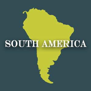 Discover South American Cuisine